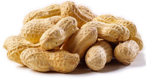 Lạc là thức ăn rất tốt cho cơ thể của con người - Lý do vì sao?