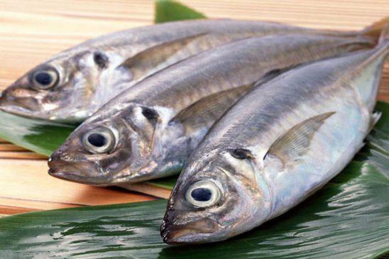 Ăn cá biển nguy hại cho đàn ông và thật hư ra sao?