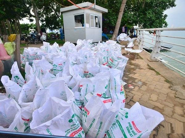 Hàng chục bao tải cá xếp hàng chờ đem đi tiêu hủy.